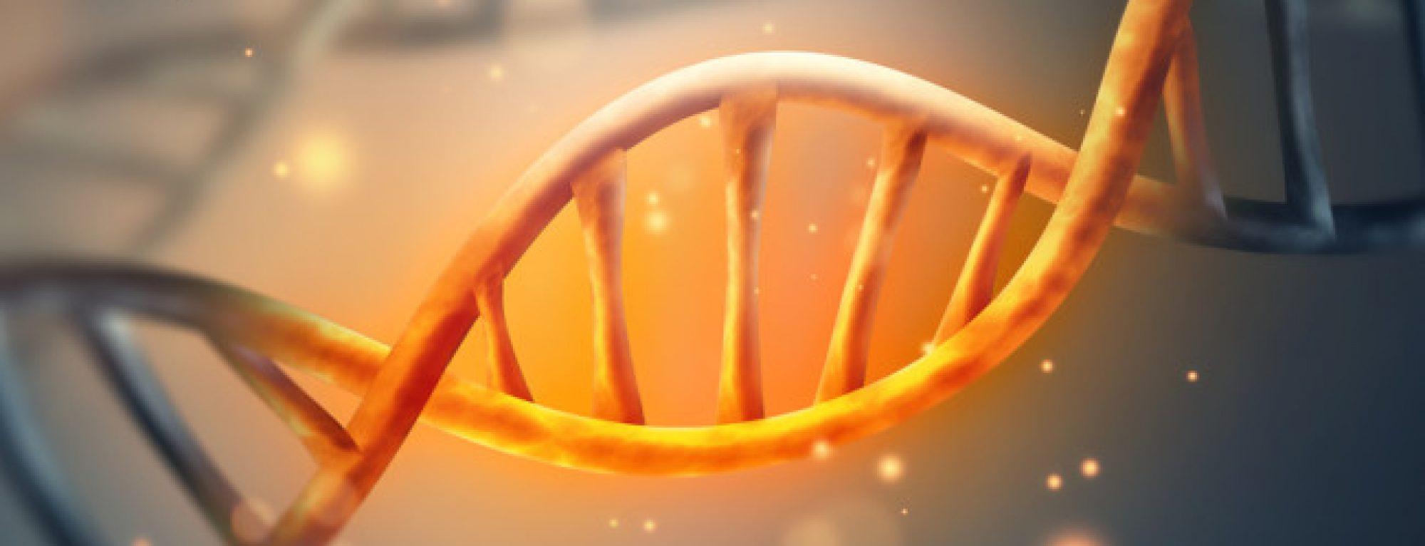 Analýza DNA